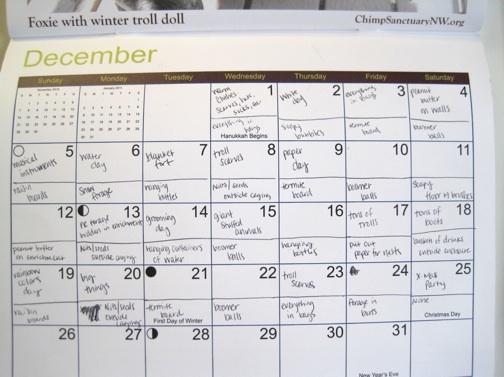 enrichment calendar