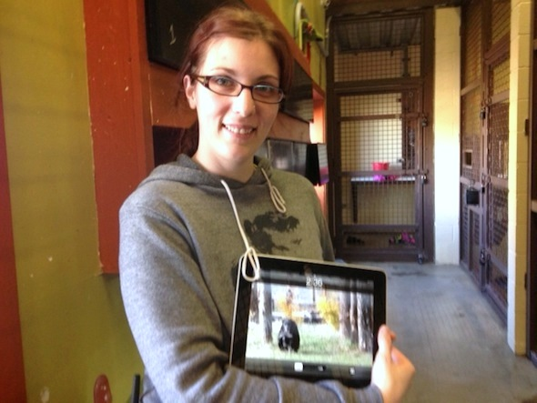 web caregiver debbie hold new ipad