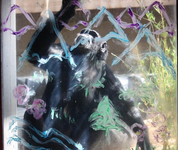 web_Jamie_fullbody_touch_paint_on_window_between_GH&PR_ls_IMG_3652