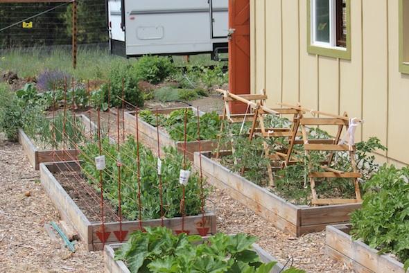 web_garden_slant_view_kd_IMG_0730
