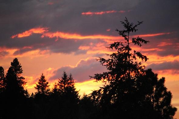 web_sunset_kd_IMG_3514