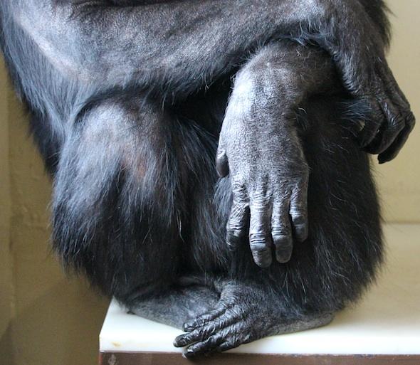 web_annie_hands_feet_sit_fr4_kd_IMG_8308