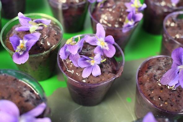 web_Easter_smoothie_violets_IMG_0452