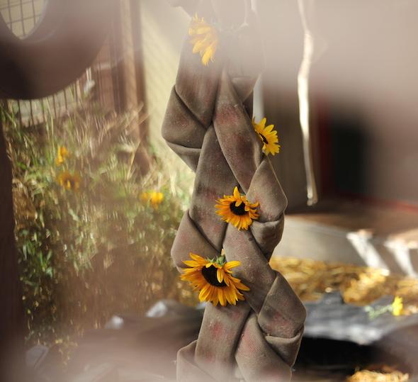 web_sunflowers_enrichment_in_firehose_braid_kh_gh_img_7080