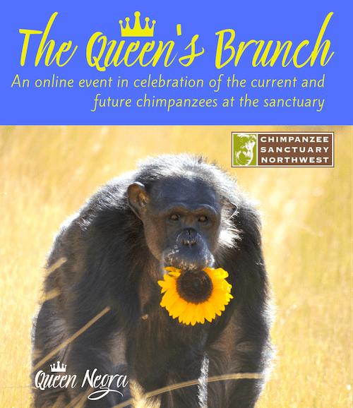 image: queens brunch