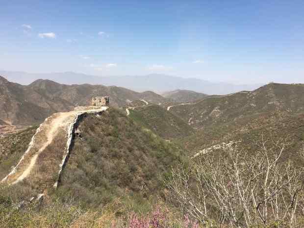Bartmann-chinesische-Mauer