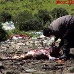 Sky Burial - Tibetan ritual dissection