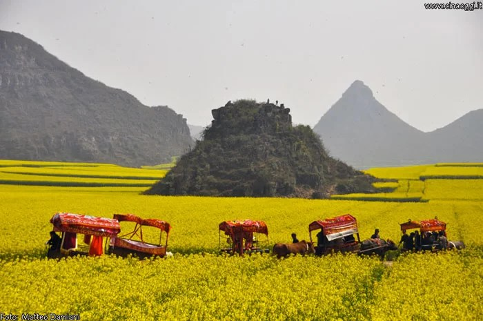 Luoping - must-see destinations in China