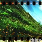 spinner_360_sunflowers_002
