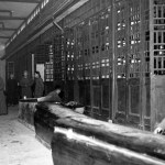 chinese-funeral-parlor-004