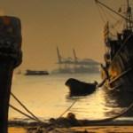 harbour-slim