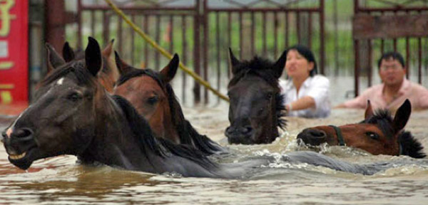 pictures of floods