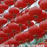 red-chinese-lanterns