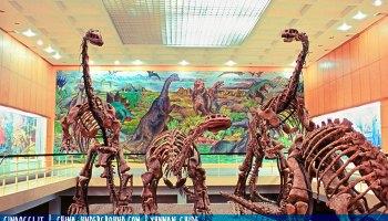 Dinosaur Valley of Lufeng