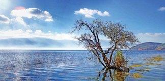 trip to xingyun lake