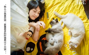 World cat day in China