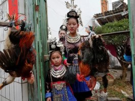 Chicken wedding