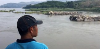 Mekong ecosystem