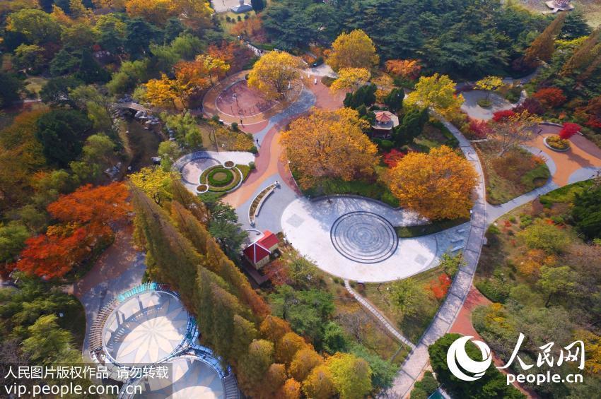 Qingdao-Shandong-Province
