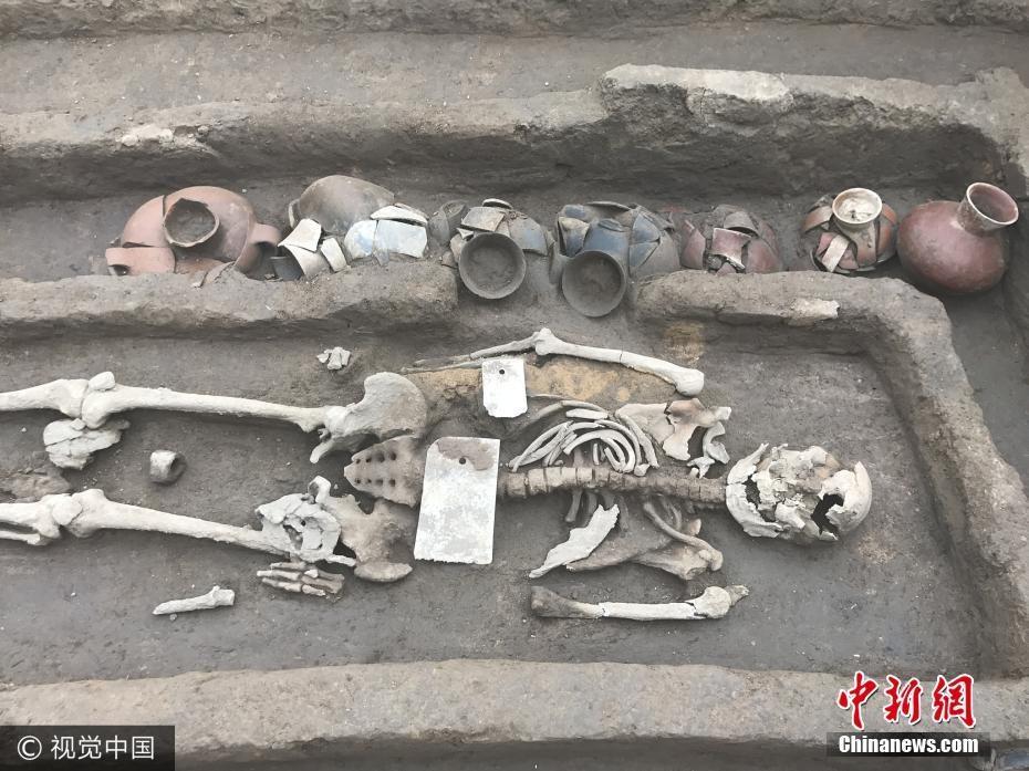 Dawenkou skeleton
