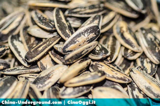 sunflower-seed-china-images