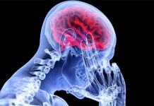 Human-head-transplant-china