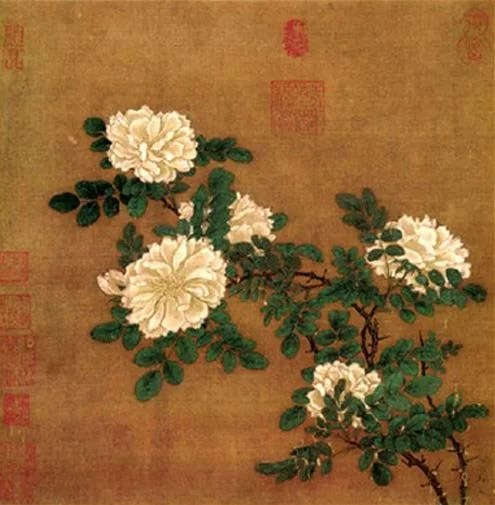 Ma-Yuan-Song-Dynasty-White-rose