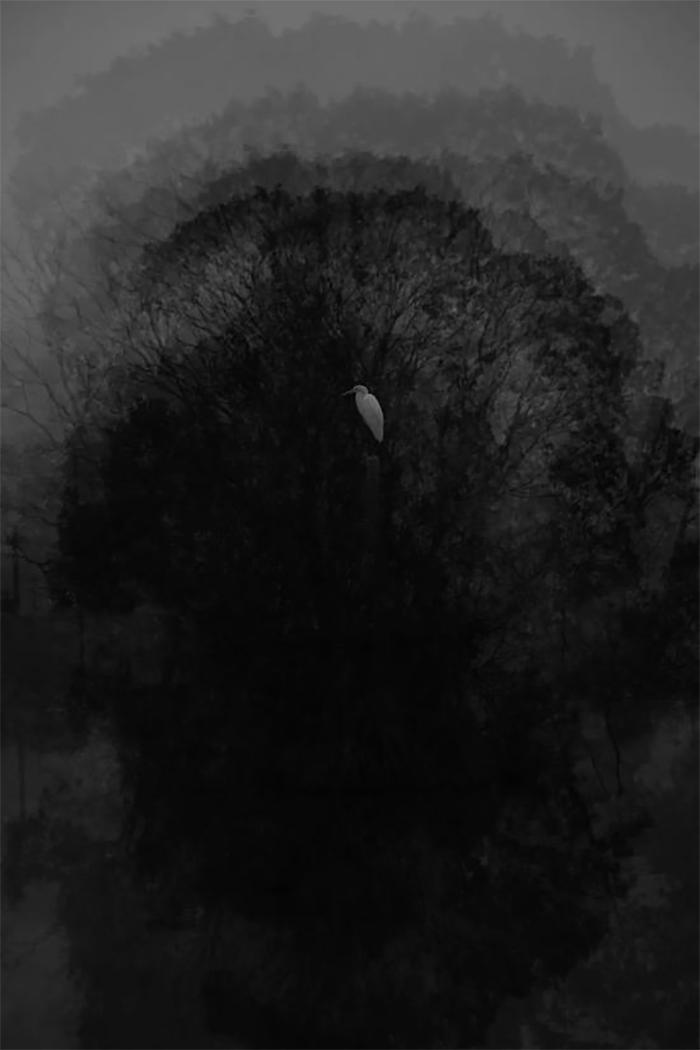 《归去-1》, 2017 80×53.3cm,无酸 收藏艺术纸 Returning 1 , 2017 - 80×53.3cm, Acid-free paper for artwork collection, Image ©Ribao Xiao