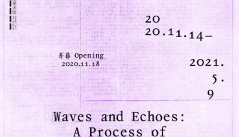 Waves and Echoes