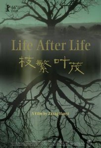 "Poster for the movie ""Life After Life"""
