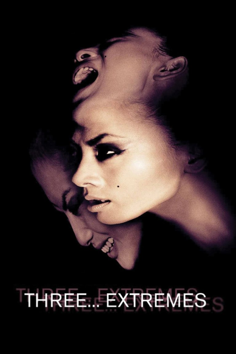 """Poster for the movie """"Three… Extremes"""""""