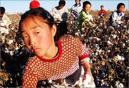rape redemption injustice and mercy in picking cotton a book by jennifer thompson cannino and ronald Picking cotton: book summary and reviews of picking cotton by jennifer thompson-cannino, ronald cotton, erin torneo join injustice and redemption are overused.