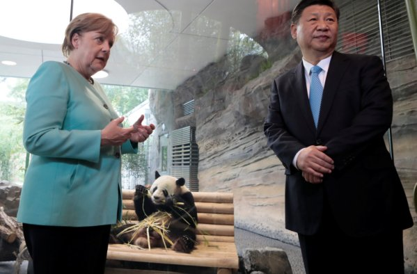 German Chancellor Angela Merkel and Chinese President Xi Jinping attend a welcome ceremony for Chinese panda bears Meng Meng and Jiao Qing at the Zoo in Berlin
