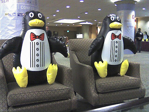 Inflatable Penguins Invade Chinese Zoo