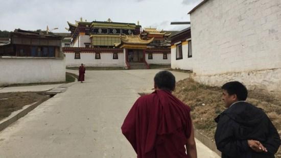 博谈网 | 吃 祈祷 爱党:中国政府带领外国记者团访问阿坝