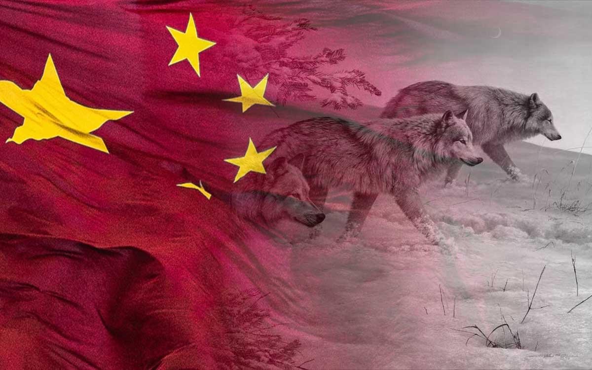 """The image shows a Chinese flag blending into a pack of wolves. China's """"Wolf Warrior"""" pack is changing the face of Beijing's diplomacy."""