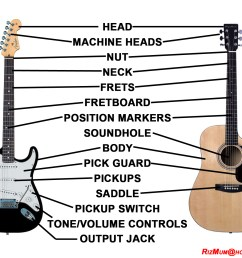 guitar body diagram trusted wiring diagram hollow body guitar diagrams guitar body diagram [ 1512 x 1224 Pixel ]