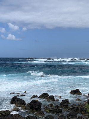 1. Tag: Ilha verde – die grüne Insel