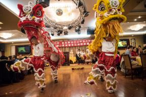 New Year-Lion Dancing