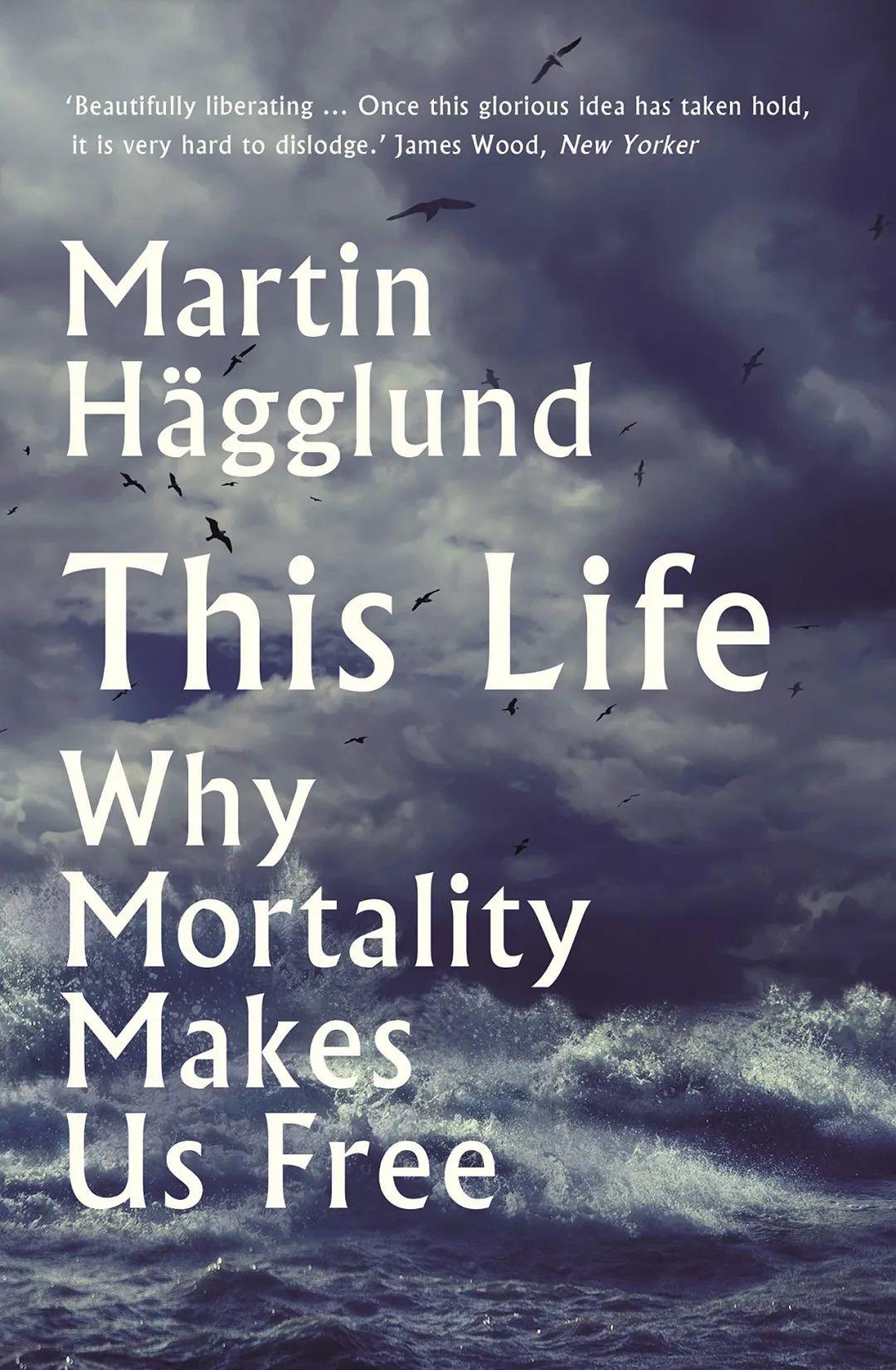 哲学重磅,美国人的治愈系?耶鲁学者海格隆德谈宗教和资本主义