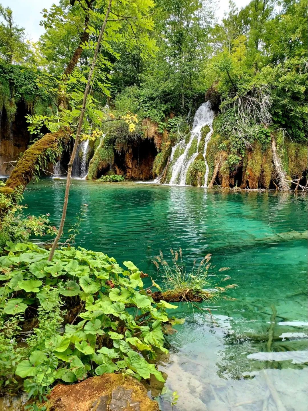 又一场说走就走的旅行:巴尔干半岛掠影 (四)