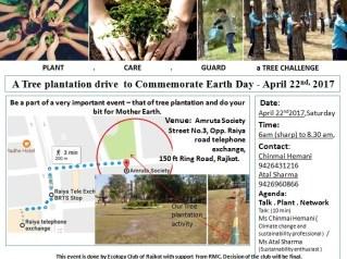 Tree plantation Arpil 22nd update
