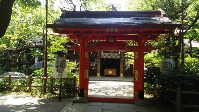 東京・愛宕神社の「千日詣り ほおずき縁日」2021 日程や意味は?