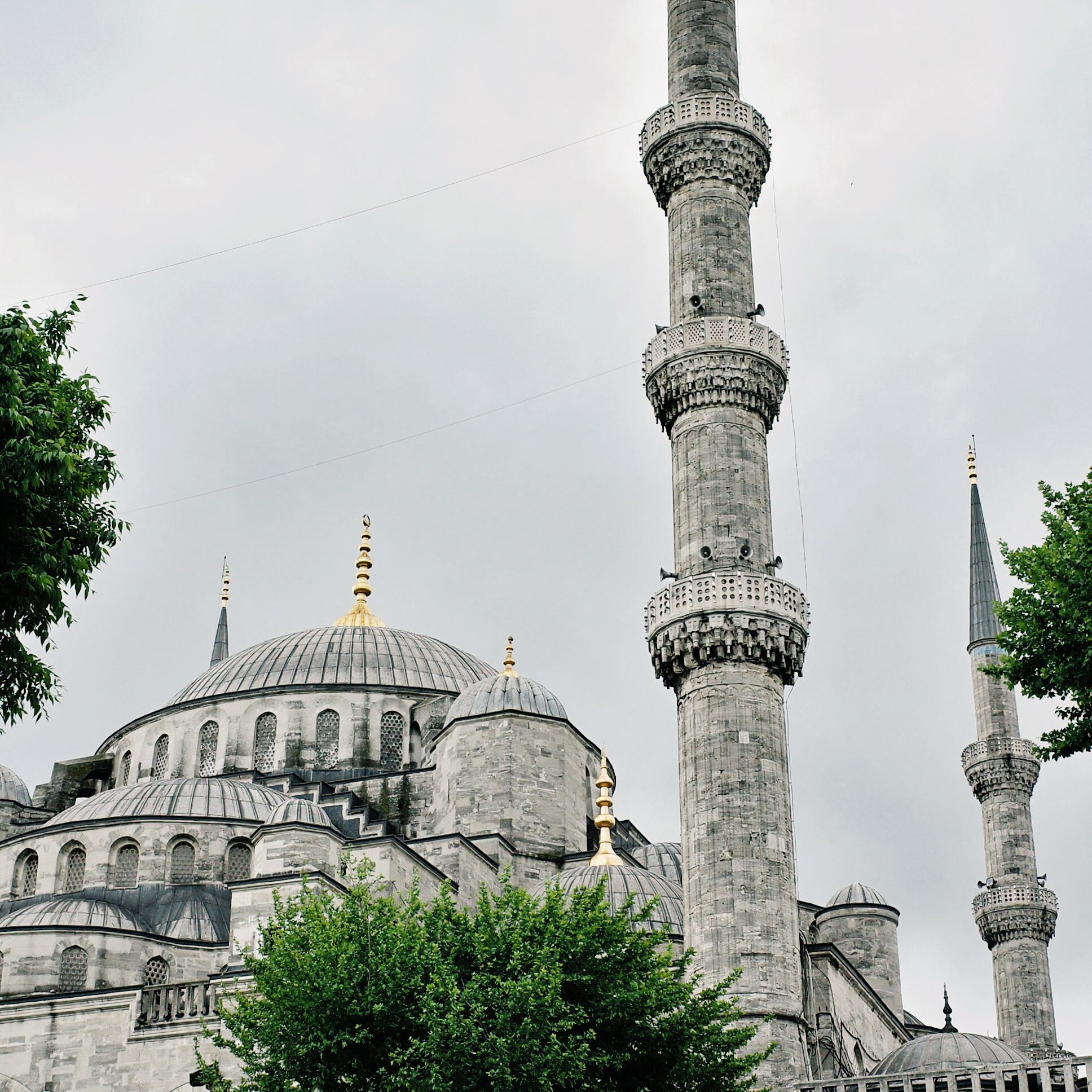 我在伊斯坦堡的12小時 – 猴子的旅行