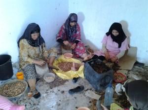 Berber kraken argan noten