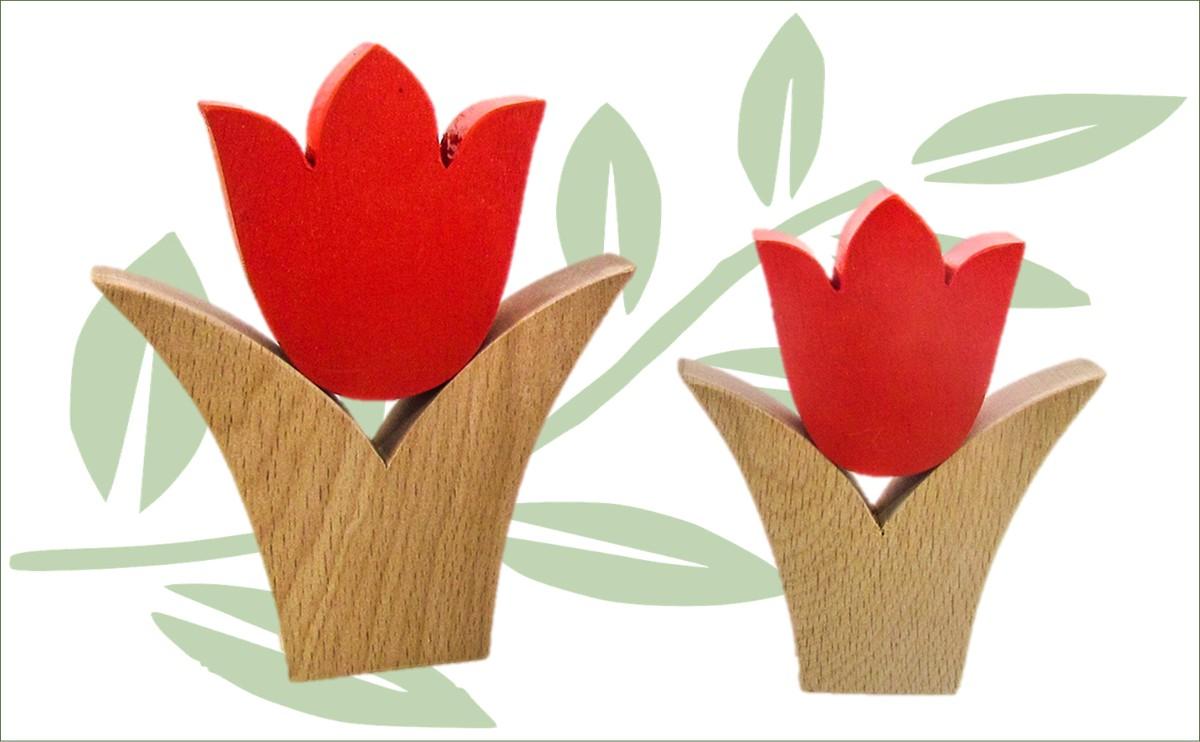 Chios tulpen set