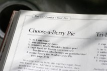 blackberry-pie-recipe