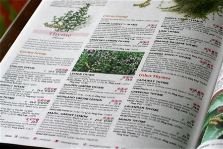 thyme-to-order