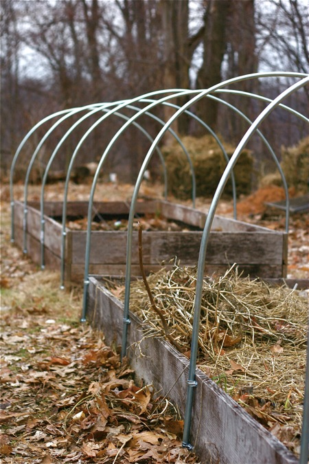 hoop-houses-on-raised-beds