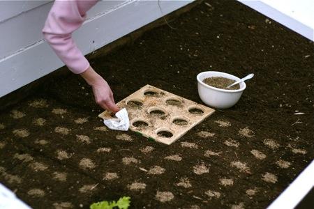 planting-seeds-in-cold-frame1
